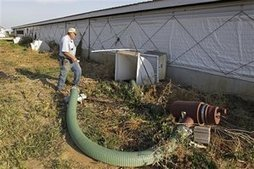 EPA can't regulate livestock farms it can't find | Climate change challenges | Scoop.it