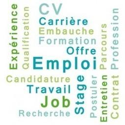 Comment trouver un emploi sur Twitter   SEM Search-Engine-Marketing   Scoop.it