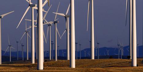 Power Company's Guilty Plea Nets Big Fine For Bird-Killing Wind Turbines | Renewable Energy, Waste Minimization & Recycling | Scoop.it