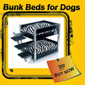 The Dog Blogger: Bunk Beds for Dogs | The Dog Blogger | Scoop.it