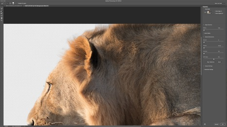 Adobe Releases Major Photoshop CC Update 2015.05 - Wim Arys camera reviews | photography stories | Scoop.it