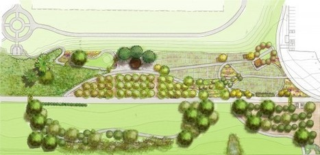 Seattle's Beacon Food Forest Is The Next Step In Urban Agriculture | Food related production. | Scoop.it