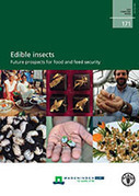 Edible insects | Food & Agriculture | Scoop.it