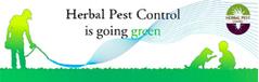 Herbal Pest control In Delhi Gurgaon,Noida | pest control | Scoop.it