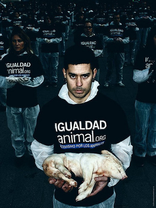 humanityANIMALS: ESCANDALO...MALTRATO ANIMAL | ANIMALES | Scoop.it