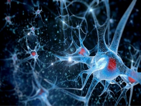 #Brain tumor modeling using the CRISPR/Cas9 system: state of the art and view to the #future | Limitless learning Universe | Scoop.it