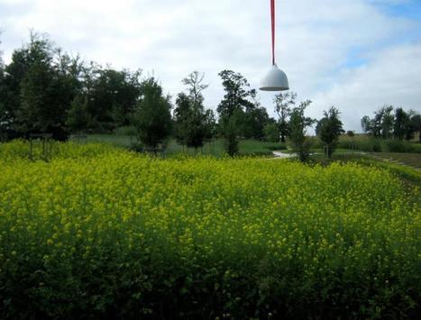 Installation sonore -Jardin La Borie - Louis Dandrel | DESARTSONNANTS - CRÉATION SONORE ET ENVIRONNEMENT - ENVIRONMENTAL SOUND ART - PAYSAGES ET ECOLOGIE SONORE | Scoop.it