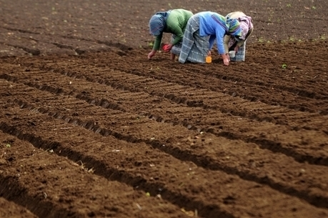 Invest in Soil; Sustain Life.   Climate Finance   Scoop.it