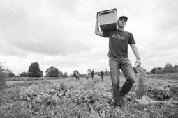 Innovative Nonprofit Captures Food Waste, Feeds Hungry   Your Mark On The World   # Hashtag Marketing   Scoop.it