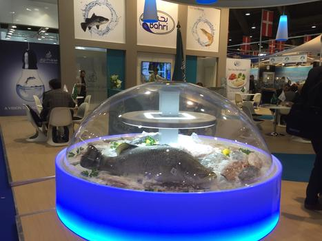 Red Sea Barramundi at European Seafood Expo 2015 | National Aquaculture Group (NAQUA) | Scoop.it