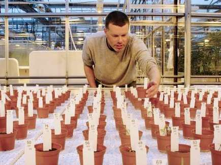 Crops grown on 'Mars' soil found safe to eat... FoxFeeds Pro | Agrarforschung | Scoop.it