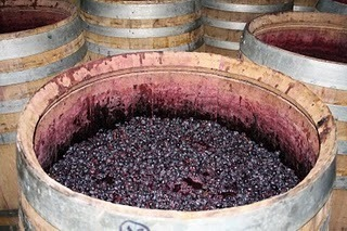 Harvest 2011 Ended | @zone41 Wine World | Scoop.it