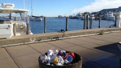 Rubbish damages landscape in Oak Bluffs - Martha's Vineyard Times   Dumpster Rental News   Scoop.it