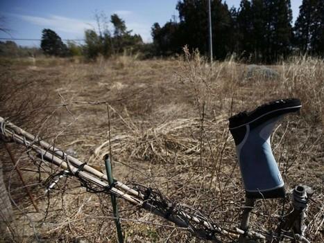 «Crime d'Etat» à Fukushima: «L'unique solution est la fuite» - Rue89 | Japan Tsunami | Scoop.it
