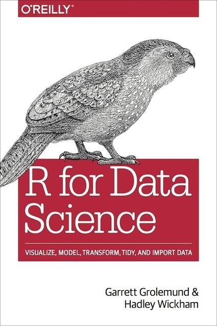 R for Data Science | #Dataviz - #OpenData | Scoop.it