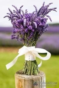 Lavender Wedding Inspirations - Lavenderworld   Naturally Beautiful Weddings   Scoop.it