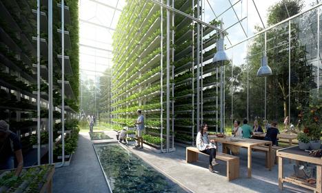 Autonome en nourriture et en énergie, ce village zéro déchet va être bâti aux Pays-Bas | Cité du futur | Scoop.it