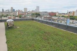 White roofs beat 'green' roofs on climate change, says Berkeley Lab study - San Francisco Business Times | Sustain Our Earth | Scoop.it