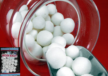 Do it Yourself: Mothballs as Pest Control | Business | Scoop.it