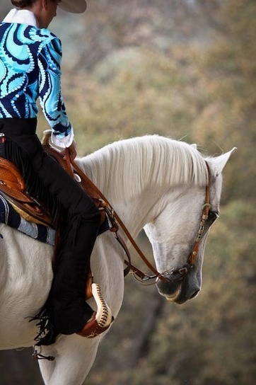 The Growing Sport of Western Dressage | Western Lifestyle | Scoop.it