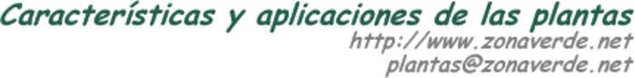 (ES)-(LA)-(DE)-(IT)-(FR)-(EN)-(CA)-(EU)-(GD) – Glosario de nombres científicos | zonaverde.net | Glossarissimo! | Scoop.it