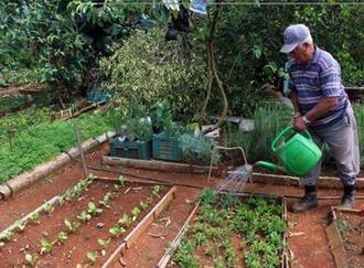 Cuba Develops Crops Adapted to Climate Change | Je, tu, il... nous ! | Scoop.it