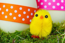 Easter Craft Ideas For You And Your Children | About Design | Scoop.it