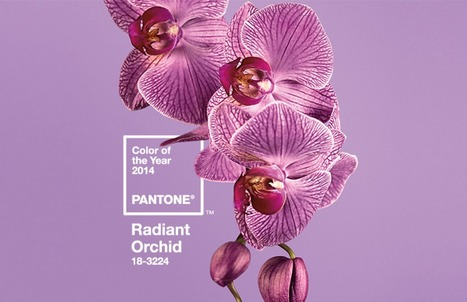 Pantone 'Colour of the Year' - Radiant Orchid   Lifestyle Magazine   Scoop.it