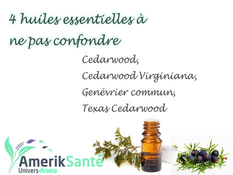 Cedarwood : 4 huiles essentielles à ne pas confondre - | Aromathérapie | Scoop.it