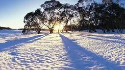 Helpful Winter Household Products To keep Handy - News - Bubblews | Are you ready to earn online! | Scoop.it
