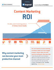 The ROI of Content Marketing | Vos visiteurs B2B ont faim, (re)nourrissez les ! | Scoop.it