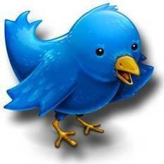 Définition > Twitter   définition détaillé des différents réseaux sociaux   Scoop.it