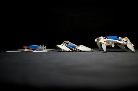 Origami Robot Folds Itself, Then Just Crawls Away | IFLScience | Robotics Frontiers | Scoop.it