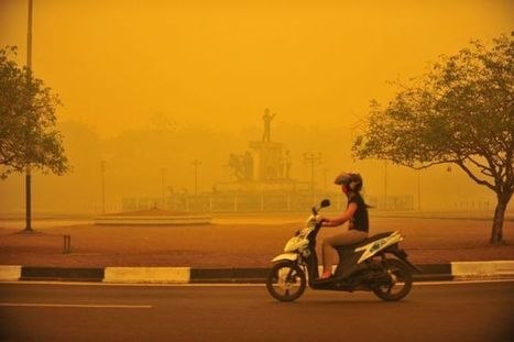 Indonesia haze: Child evacuation plan prepared - BBC News | Geography at BM | Scoop.it