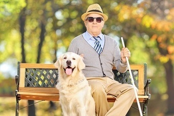 Huntington, WV Social Security Disability Lawyer: Helping the Blind | Jan Dils | Scoop.it