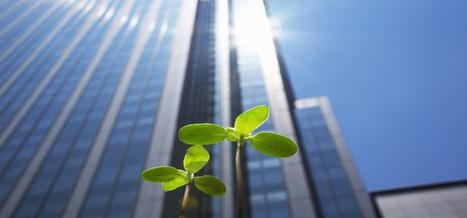 L'éco-quartier - actualité immobilière | les ecoquartiers | Scoop.it