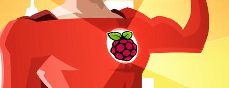 Robots, Fruit Drums and More: 5 Cool Raspberry Pi Add-Ons   Educació de Qualitat i TICs   Scoop.it