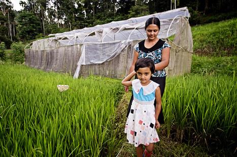 Sri Lanka Internet School For Farmers | Internet Society Community Grant Project | Internet Development | Scoop.it