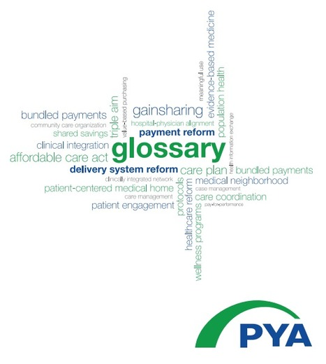 (EN) (PDF) - A Glossary of Terms For Payment & Delivery System Reform | pyapc.com | Glossarissimo! | Scoop.it