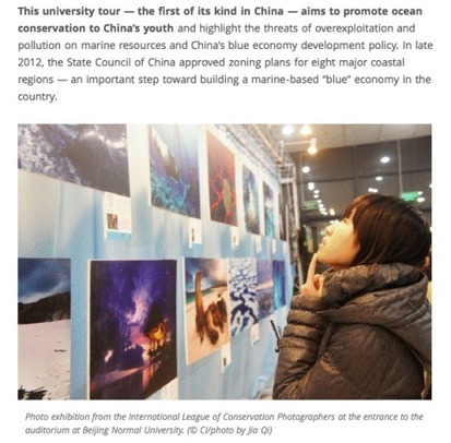 The Conservation Movement in China | Conservation | Scoop.it