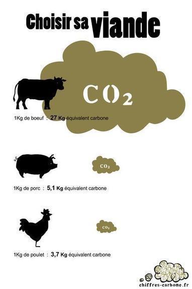 Rapport du Giec : la réduction des gaz à effet de serre est possible ... - L'Obs | carbon sequestration | Scoop.it