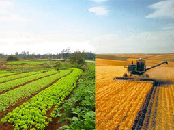 Organic vs Conventional. Is that really the question? | Vertical Farm - Food Factory | Scoop.it
