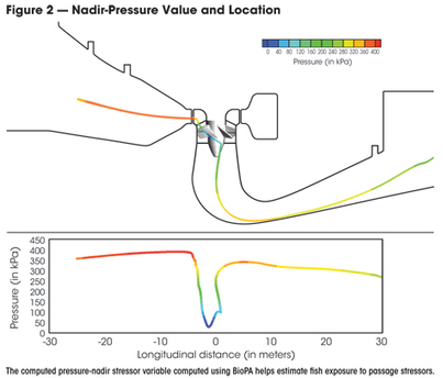 Computational Tools to Assess Turbine Biological Performance - HydroWorld | Sediment transport mechanics | Scoop.it