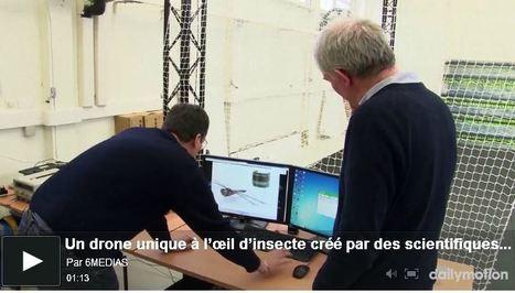 [Vidéo] Un drone unique à l'œil d'insecte créé par des scientifiques marseillais | EntomoNews | Scoop.it