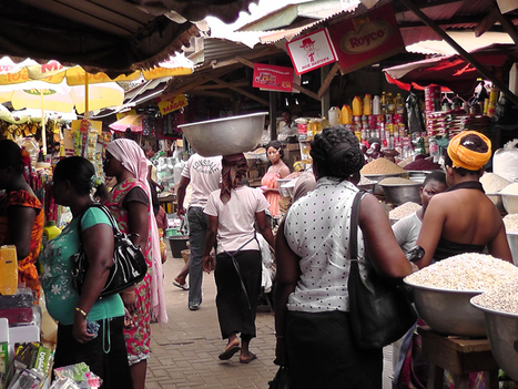 Making links from small farms to markets in Africa | Questions de développement ... | Scoop.it