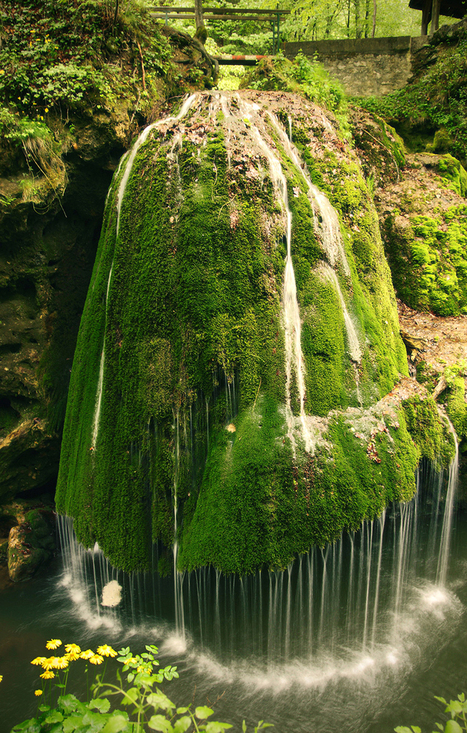 The Most Unique Bigar Waterfall in Nature Reserve, Romania | Travel Romania | Scoop.it