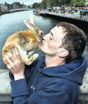 Heroic pet rescuer hoping for shelter of his own - Irish Independent | Animal Rescue and Animal Rights | Scoop.it