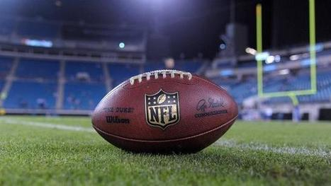 Ray Rice versus Donald Sterling: Ethics in sports | The Bohemian ... | Sports Management Ehtics_SmithJW | Scoop.it