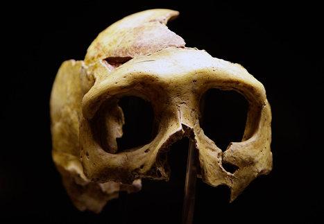 Nykyihminen ja neandertalilaiset lisääntyivät 50000–60000 vuotta sitten   Historia   Scoop.it