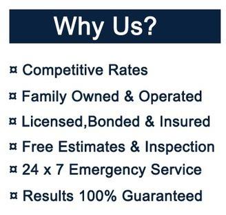 Stew's Bail Bonds MN, Minnesota Bail Bonds, Fast 24 Hours Agents | Internet Marketing | Scoop.it